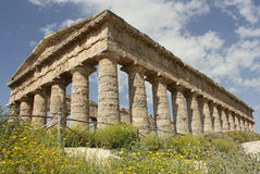 Segesta - The Doric temple. The imponent ancient temple of Segesta Royalty Free Stock Photography