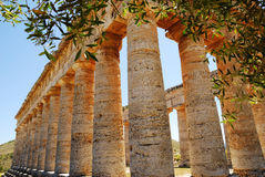Segesta (Sicily) Royalty Free Stock Images