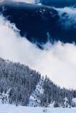 Seggiovia di Whistler Fotografie Stock Libere da Diritti
