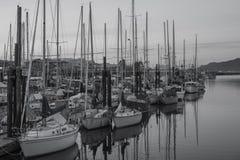 Segla fartyg på Campbell River Marina Royaltyfria Foton