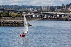 Segla i Seattle Arkivbild