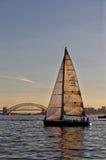 Segla på den Sydney hamnen Arkivbilder