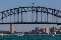 Segla på hamnen royaltyfri foto