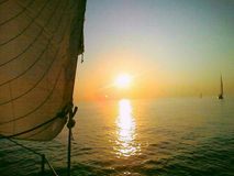 Segla på solnedgången royaltyfria bilder
