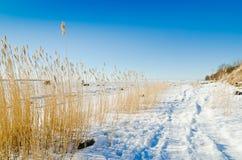 Segla utmed kusten av det baltiska havet Royaltyfri Fotografi