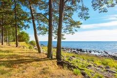 Segla utmed kusten av det baltiska havet estonia Royaltyfri Fotografi