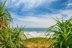 Segla utmed kusten hav Royaltyfria Foton