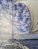 segla yacht Arkivbild