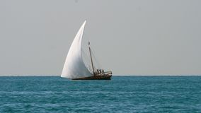 Segla yachten med vit seglar lager videofilmer
