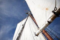 Seglar av ett högväxt skepp mot den blåa himlen (Boston, Massachusetts, USA/September 20, 2012) Arkivbild