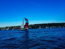 seglar den mörka losed regattaseglingen för blå färg skysportvinnaren Arkivbilder