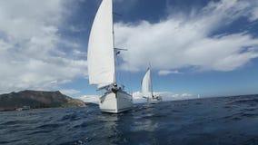 seglar den mörka losed regattaseglingen för blå färg skysportvinnaren segling Rader av lyxiga yachter på marinaskeppsdockan sport stock video