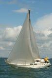 seglar under Fotografering för Bildbyråer