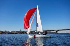 Seglingman på segelbåten under regatta Royaltyfri Bild