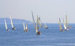SeglingregattaCor Caroli start Arkivfoto