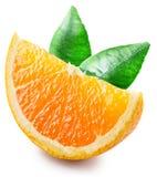 Segment av orange frukt med sidor Fotografering för Bildbyråer