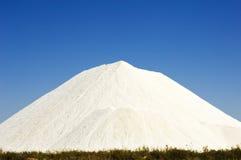 Segment de mémoire de côte de sel au Portugal Images stock