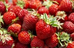 Segment de mémoire de la fraise Photo libre de droits