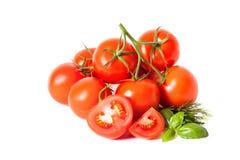 Segment de mémoire des tomates Images libres de droits