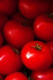 Segment de mémoire des tomates Photos libres de droits