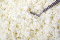 Segment de mémoire du fromage blanc photos stock