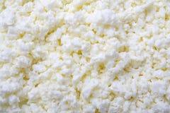 Segment de mémoire du fromage blanc photographie stock libre de droits