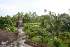 Segment tropical de forêt, Java-Orientale, Indonésie Images stock