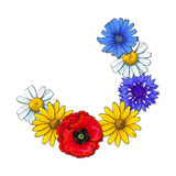 Segment of wild flower wreath, decoration element Stock Image