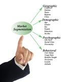 Segmentação do mercado imagens de stock