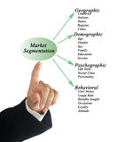 Segmentazione del mercato immagini stock