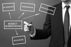 Segmentazione del mercato di scrittura dell'uomo di affari, st della gestione di impresa immagine stock