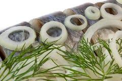 Segmenti delle aringhe salate con la cipolla ed il finocchio Immagine Stock