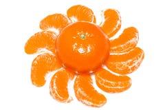 Segmenti isolati dell'agrume Raccolta del mandarino, dell'arancia e di altri segmenti sbucciati agrumi isolati su spirito bianco  Fotografie Stock Libere da Diritti