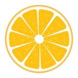 Segmento arancione Fotografia Stock