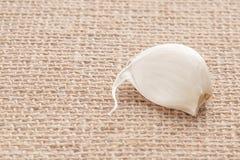 Segmento do alho no pano de vime feito de materiais naturais imagens de stock