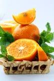Segmentos anaranjados y anaranjados y menta Imagenes de archivo