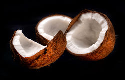 Segments of coconut Stock Photography