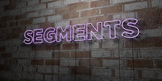 SEGMENTS - Glowing Neon Sign on stonework wall - 3D rendered royalty free stock illustration Stock Photography