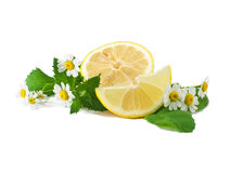 Segments of lemon. With mint and with chamomile Stock Photo