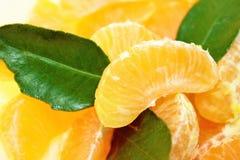 Segments of orange Stock Photography