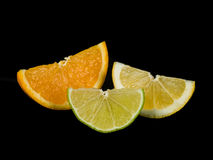 Segments oranges de chaux et de citron Images stock