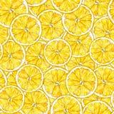 Segments oranges Retrait d'aquarelle Travail manuel Fruit tropical Nourriture saine Configuration sans joint pour la conception Image stock