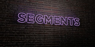 SEGMENTS -Realistic Neon Sign on Brick Wall background - 3D rendered royalty free stock image Royalty Free Stock Photos