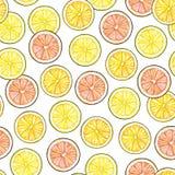 Segments of a yellow lemon of orange orange of red grapefruit fruits  on white background. Hand work drawing. Seamless pat Royalty Free Stock Photography