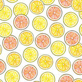 Segmenty żółta cytryna pomarańczowa pomarańcze czerwone grapefruitowe owoc na białym tle Ręki pracy rysunek Bezszwowy klepnięcie Fotografia Royalty Free