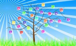 Segna l'albero con lettere Immagine Stock