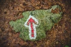 Segnale del sentiero per pedoni nella foresta nelle alpi Italia di un giorno piovoso Fotografia Stock