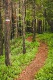 Segnale del sentiero per pedoni nella foresta nelle alpi Italia di un giorno piovoso Immagine Stock