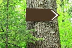 Segnale di direzione in bianco sull'albero Immagini Stock Libere da Diritti