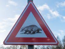 Segnale di pericolo d'attraversamento del tasso dal lato di una strada campestre rurale fotografia stock libera da diritti